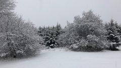 Kar Yağan İller 2019, Sağanak Kar Yağışı Beklenen iller